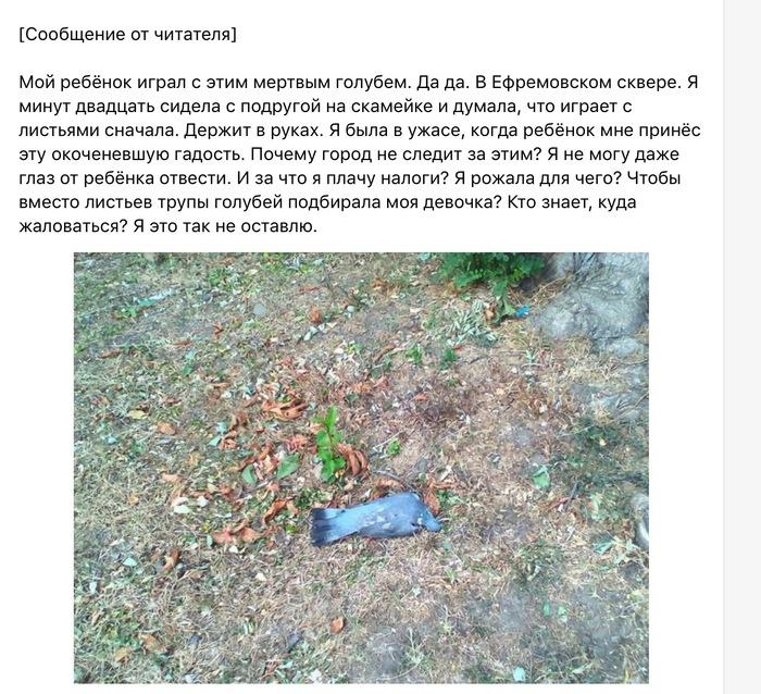 """""""Я рожала для чего?"""" Дети, Яжмать, Мертвый голубь, Вконтакте"""