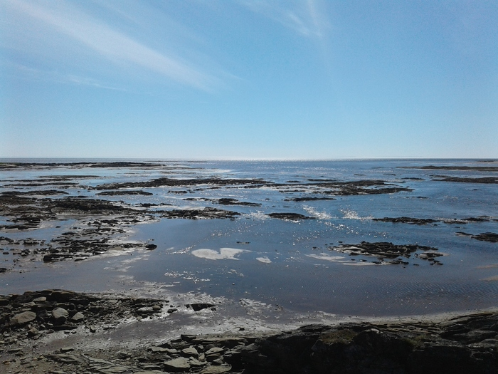 Как я провел этим летом на Кольском полуострове Природа, Кольский полуостров, Геология, Полевые работы, Длиннопост