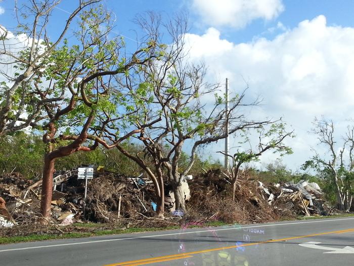 Key West is strong! Ураган Ирма, Ураган, Флорида, Key west, Длиннопост