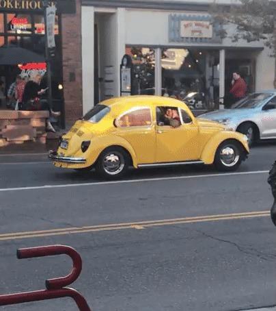 Автомобиль, созданный вызывать недоумение. О_о