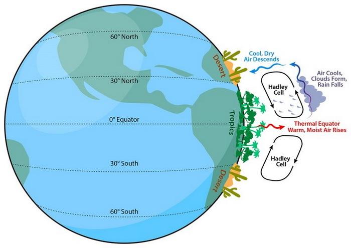 «Позеленение» Земли ускоряет потепление в холодных районах и тормозит в засушливых длиннопост, наука, климат, глобальное потепление