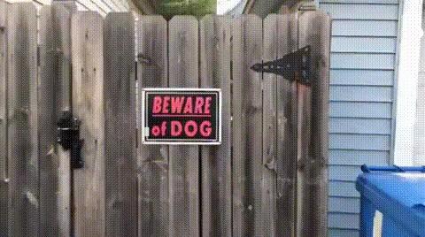 """""""Остерегайтесь собаки."""""""