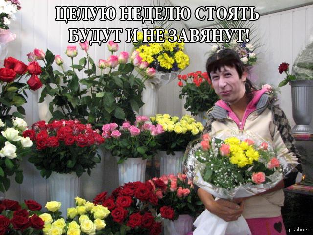 Продавец цветов смешное фото