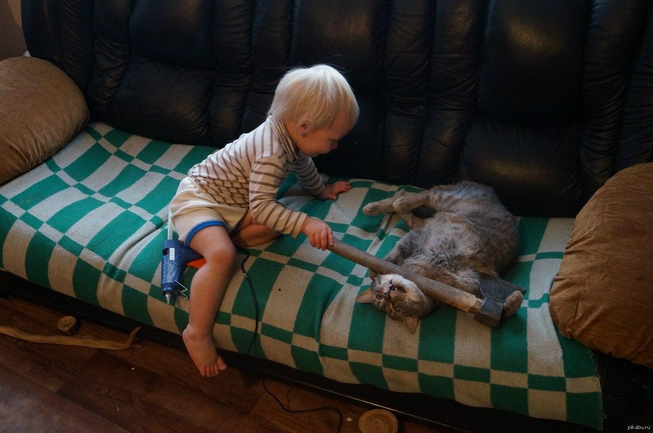 Ребенок мучает кота картинка