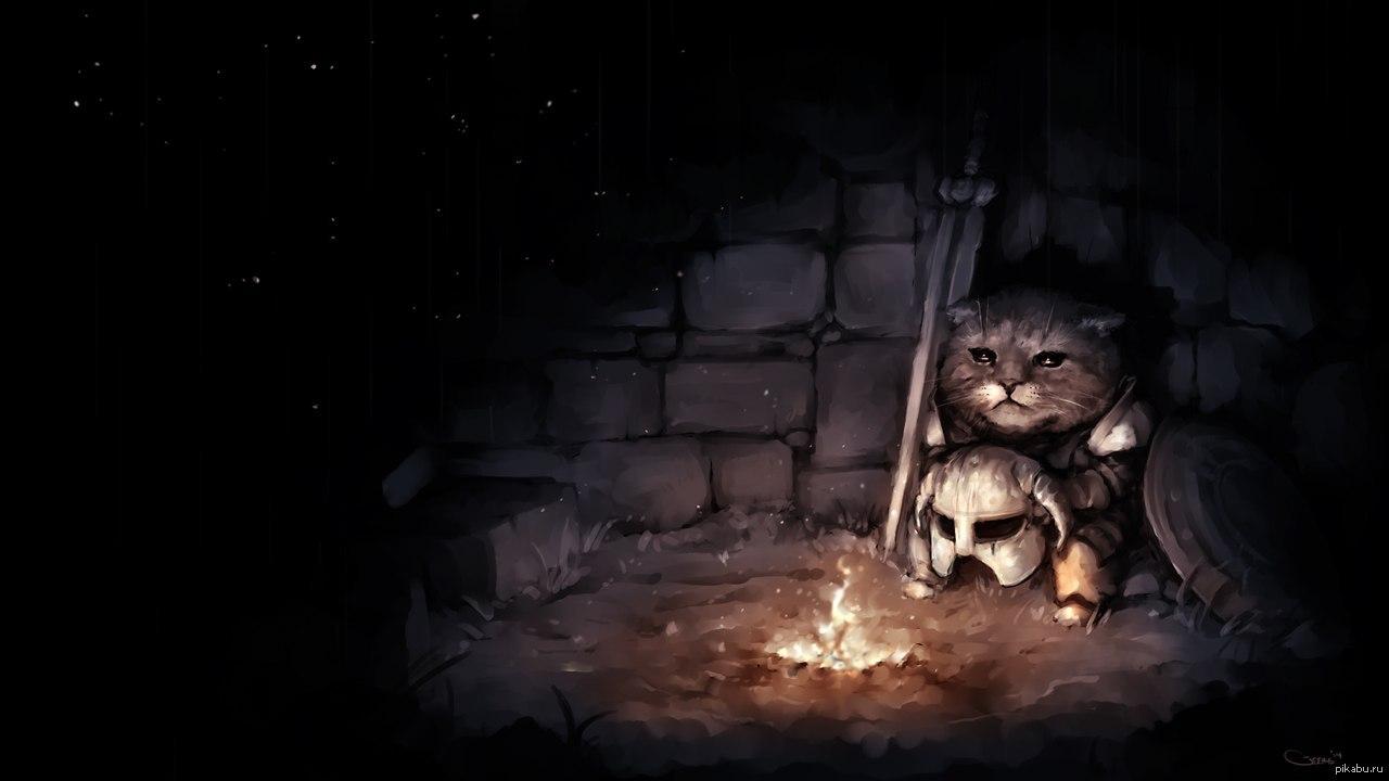 Викинг кот