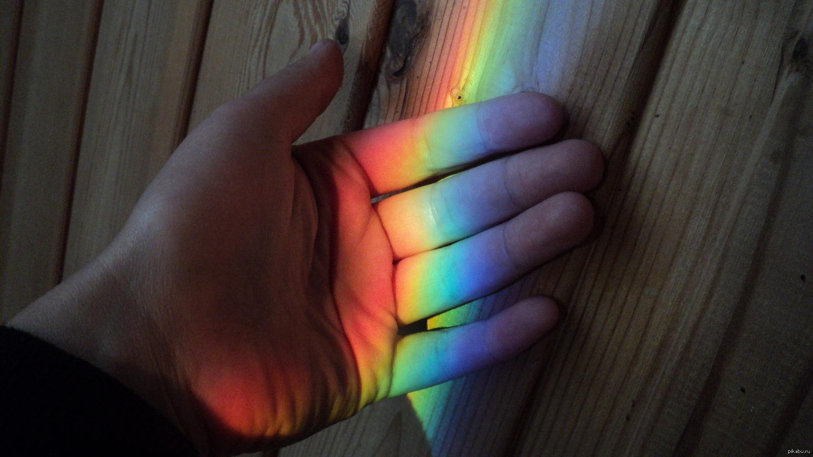 неоспоримым радуга на руке фото приложение так