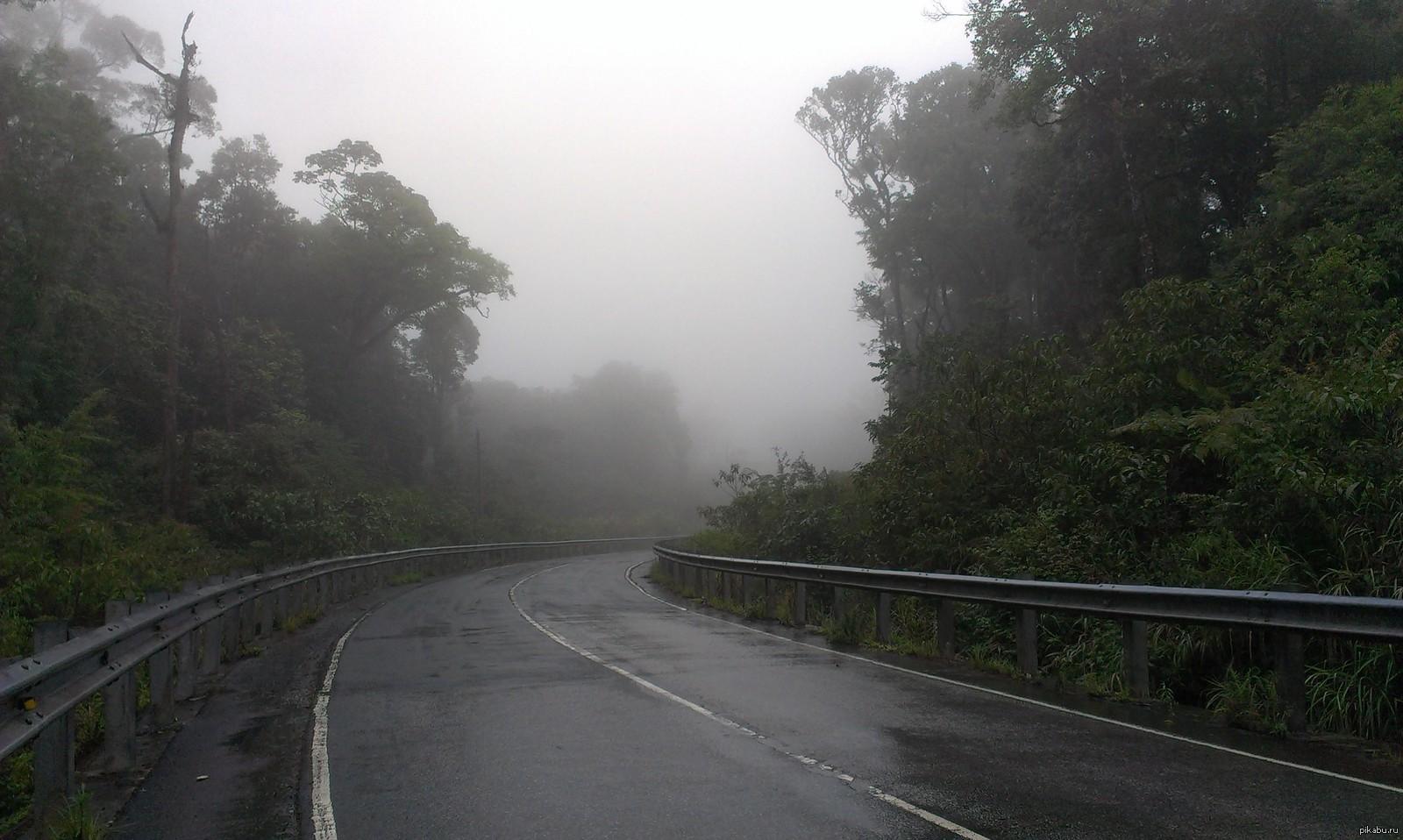 вьетнам дорога в далат фото анужите биография