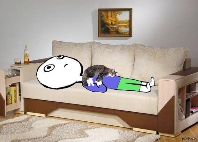 диван показалось прикольные картинки карако