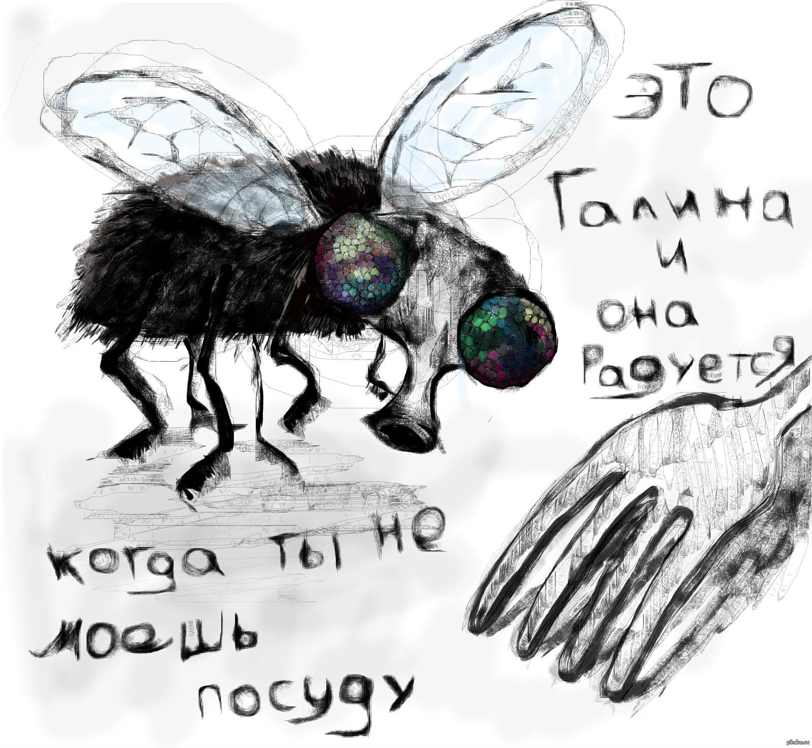 Прикольные картинки муха, мартом