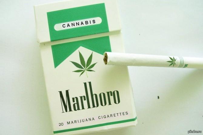 Мальборо с марихуаной в россии конопля 3d