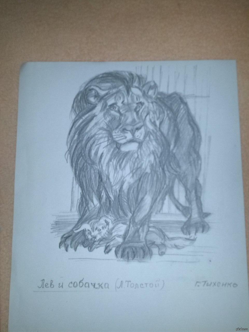 нарисовать рисунок лев и собачка поиске дополнительного, основного