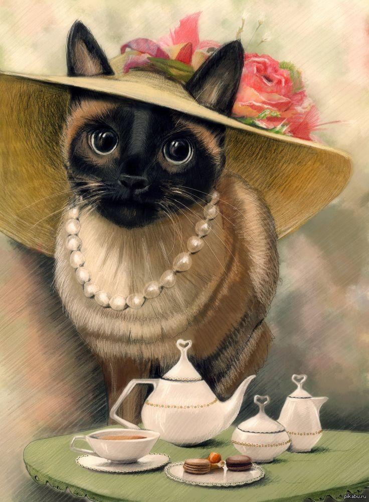 Моя открытка, открытки с нарисованными кошками