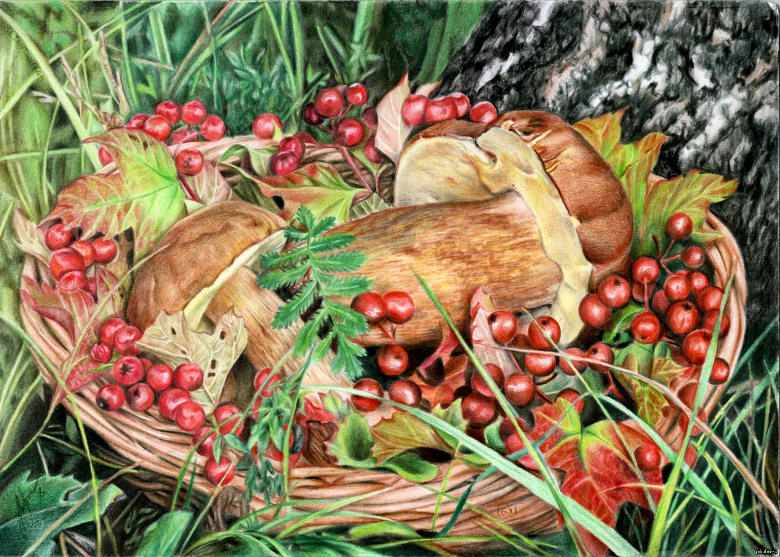 Анимационные сделать, картинки собирать грибы и ягоды