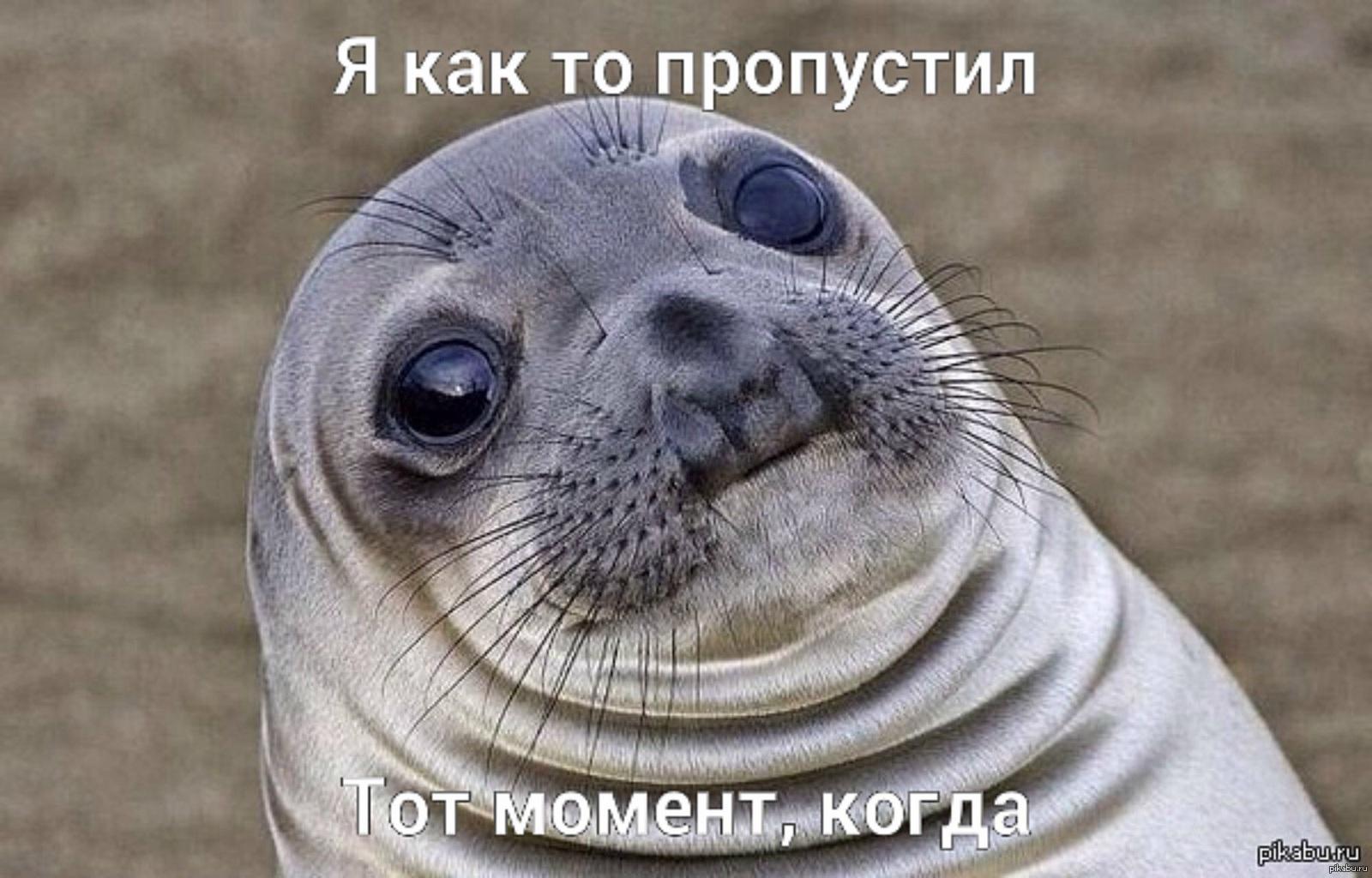 sosi-pisos-mem