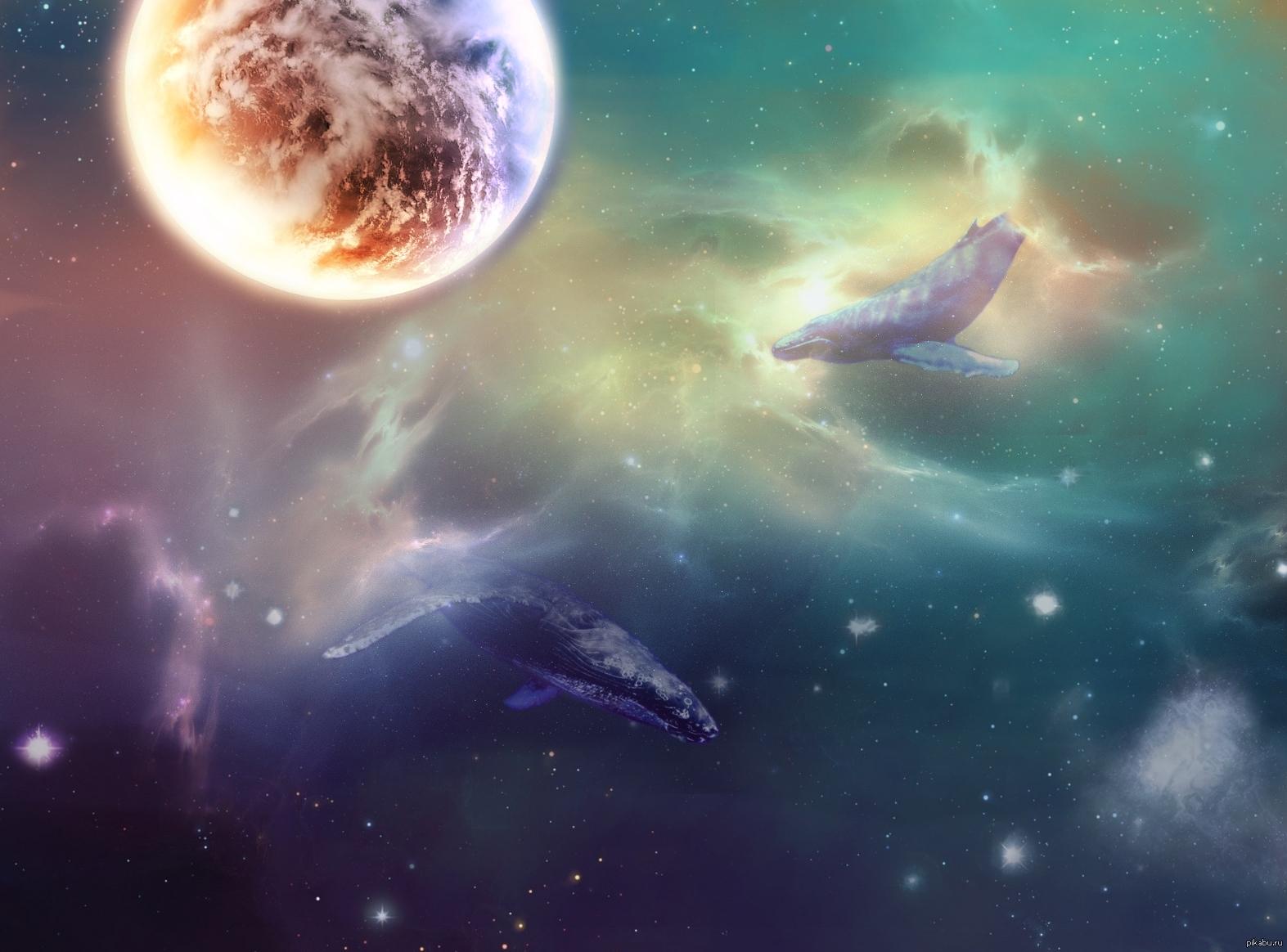 космос и киты картинки на рабочий стол волге вернулся спустя