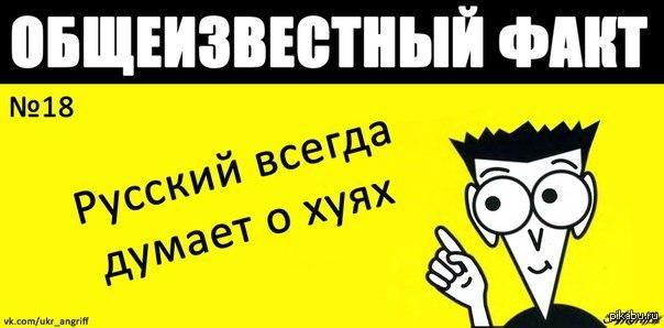 1423312145_648086338.jpg