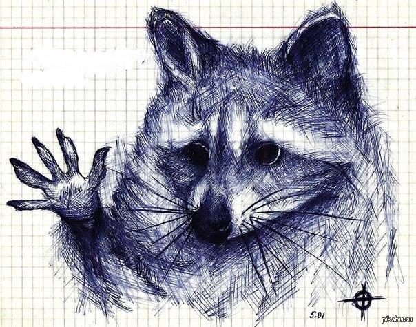 Прикольные рисунки животных ручкой, открытки