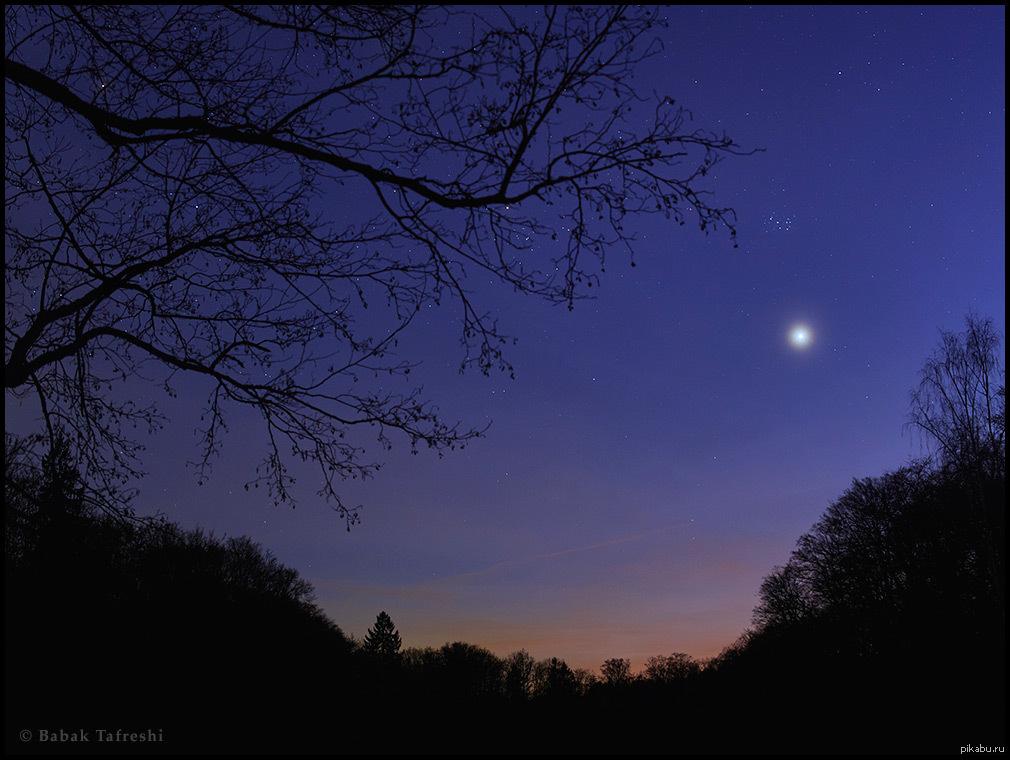 Картинки венера звезда