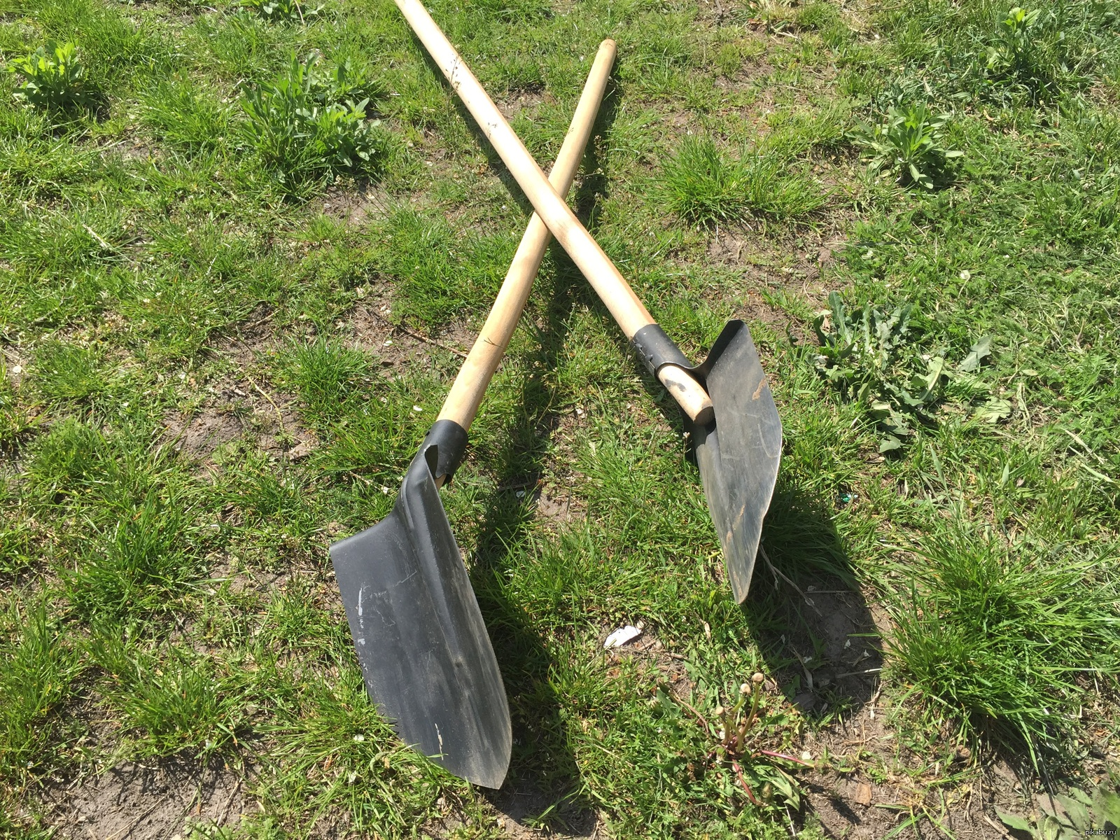 Попки фото лопата в пизде
