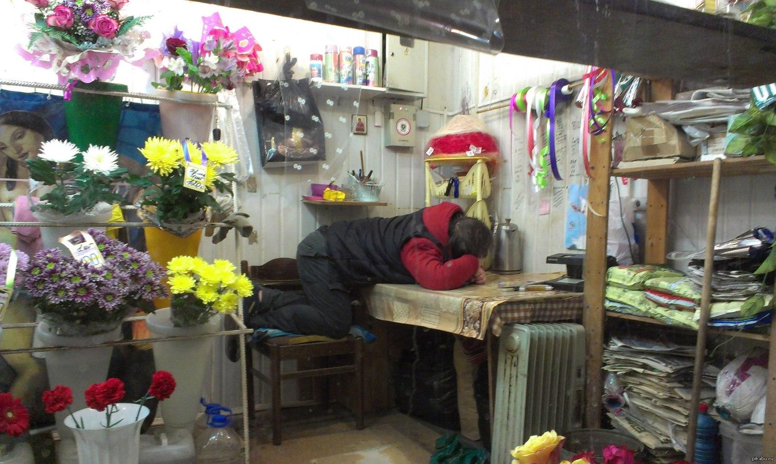 что домашний продавец цветов смешное фото города