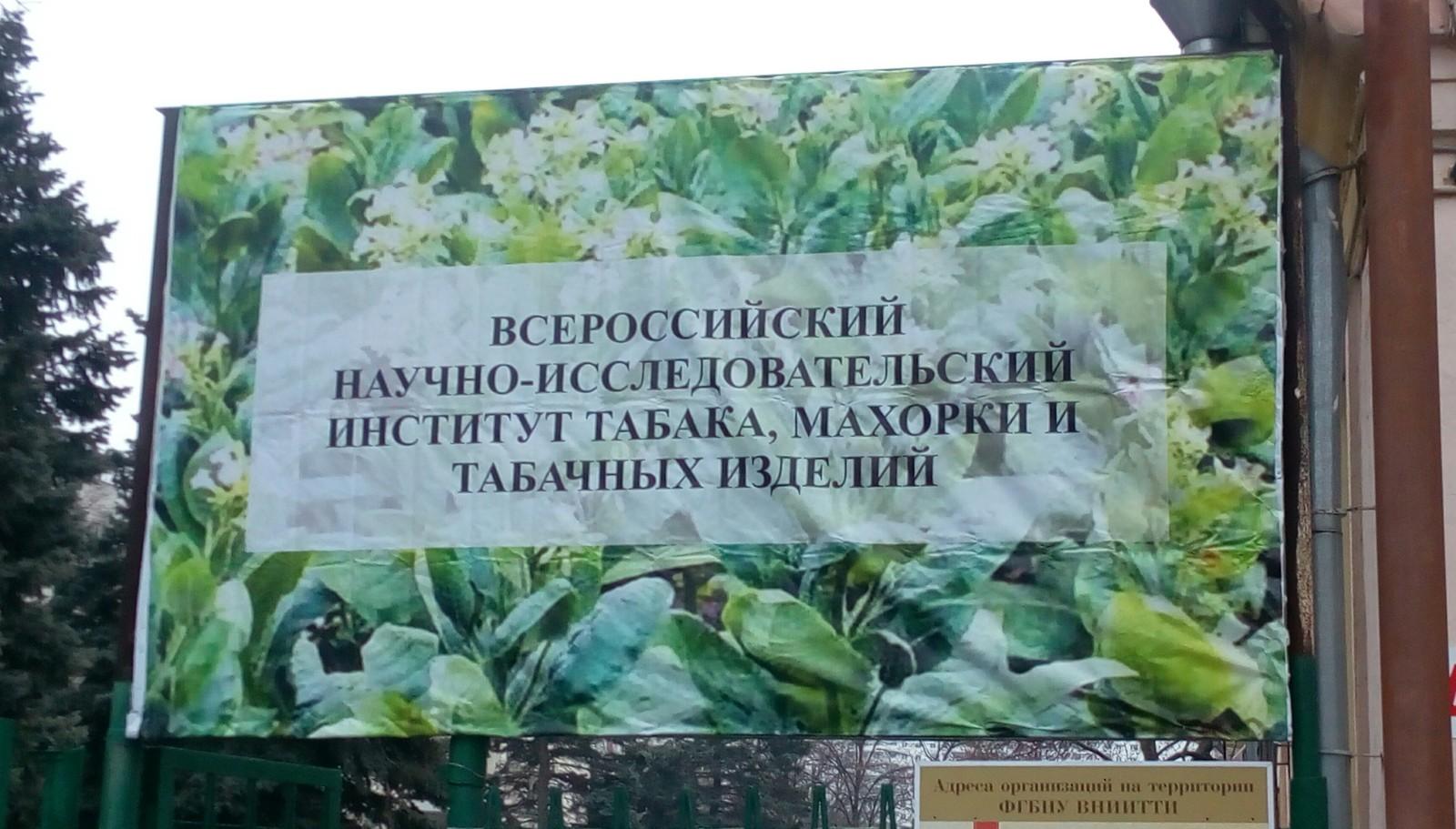 Всероссийскому научно исследовательскому институту табака махорки и табачных изделий электронная сигарета одноразовая казань