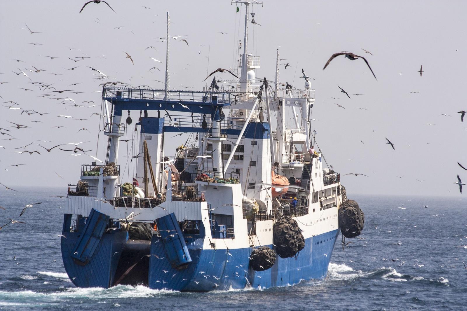 Свое судно для морской рыбалки