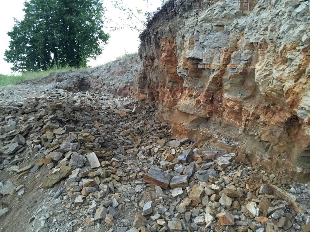 Как устроены раскопки палеонтологов